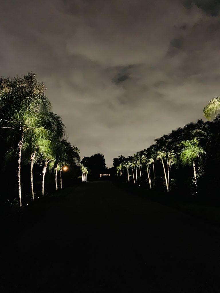 Lampscape New Gallery Landscape (1)